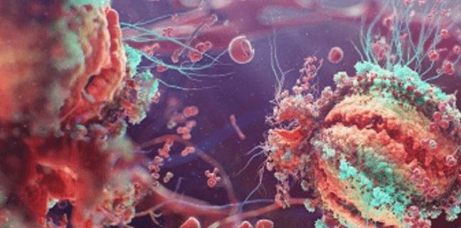 Пути заражения ВИЧ и версии происхождения вирусов