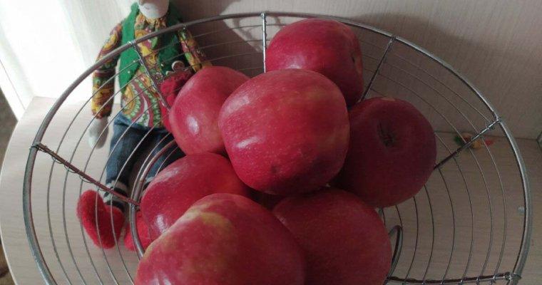 3 дні на яблуках і дострокове завершення дієти